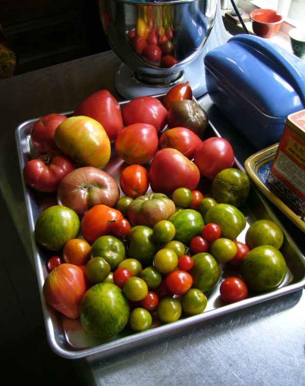 Tomatoes — some for lunch, some to turn into jam.